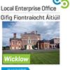 Local Enterprise Office Wicklow