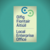 Local Enterprise Office Carlow
