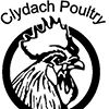 Clydach Poultry