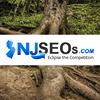 NJSEOs Responsive Website Design & Search Engine Marketing
