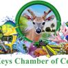 Lower Keys Chamber of Commerce