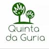 Quinta da Guria