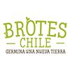 BROTES CHILE