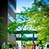 University at Buffalo Department of English