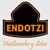 Endotzi