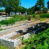 Noblesville Community Garden Project