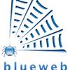 Blueweb Media Group