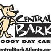 Central Bark Doggy Day Care Atlanta