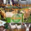 Florida A& M University     -   Small Ruminant Program