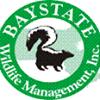 Baystate Wildlife