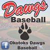 Okotoks Dawgs Baseball