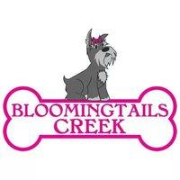 Bloomingtails Creek