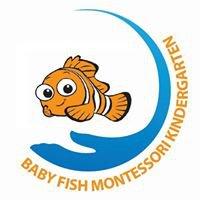 Baby Fish Montessori Kindergarten