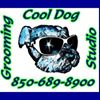 Cool Dog Grooming