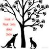 Friends of Meade County Animal Shelter