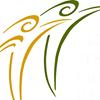 Elder Financial Protection Network (EFPN)