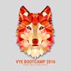 VYE (Viet Youth Entrepreneurs)