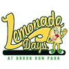 Lemonade Days (from the Dunwoody Preservation Trust)