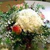 The Flower Shop/Celebrations