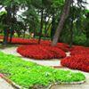 Diseño de Jardines Siwrsa