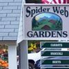 Spider Web Gardens