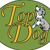 Top Dog Day Care
