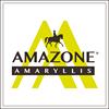 Amazone Amaryllis