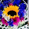 Kimberley Alice Gordon Floral Designer