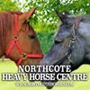 Northcote Heavy Horses