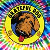 Grateful Dog Self-Serve Dog Wash