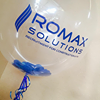 Romax Solutions Ltd