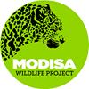 Modisa Wildlife Project