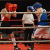 Club De Boxe Farnham Boxing Club