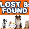 Animals LOST & FOUND in Gateshead, Newcastle, South Tyneside, Sunderland UK