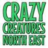 Crazy Creatures North East