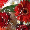 Alstros Florists