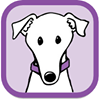 Merlin Animal Rescue