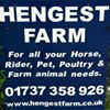 Hengest Farm