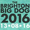 Brighton Big Dog