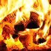 Coed Tân Ardudwy Logs Split Seasoned Firewood Ffôn: 07974355475