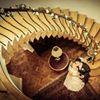 Warwick Hall Weddings