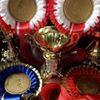 Shibden Dale Riding Club - Horse/ Pony Club