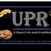Urban Pets & Reptiles