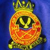 344 - Fulham Squadron, Royal Air Force Air Cadets