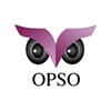 Older People Speak Out (OPSO)