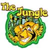 The Jungle Warrington