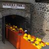 EMVG-Ecomuseo Miniere