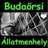 Budaörsi Állatmenhely