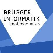 Brügger Informatik