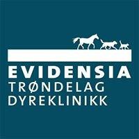 Evidensia Trøndelag Dyreklinikk